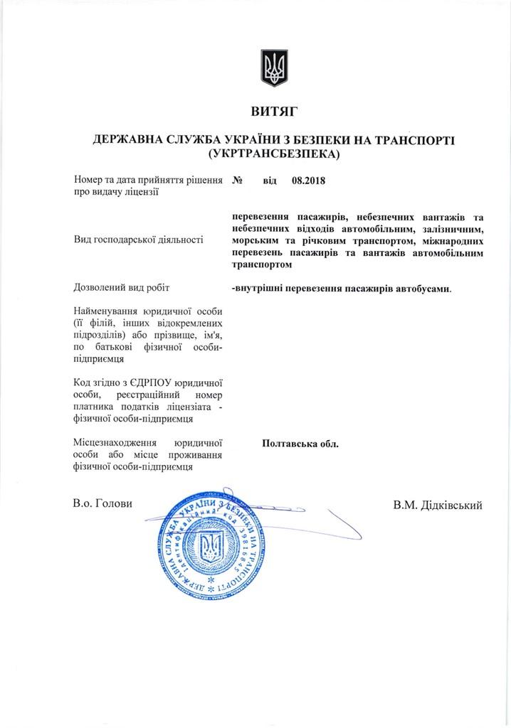 License for passenger transportation, taxi service
